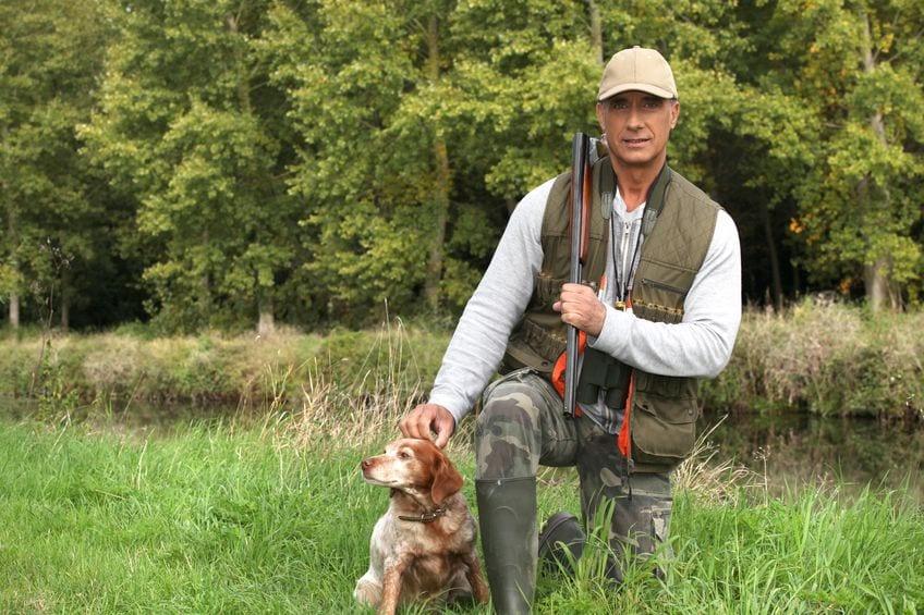 Dresser son chiot pour la chasse : conseils et astuces