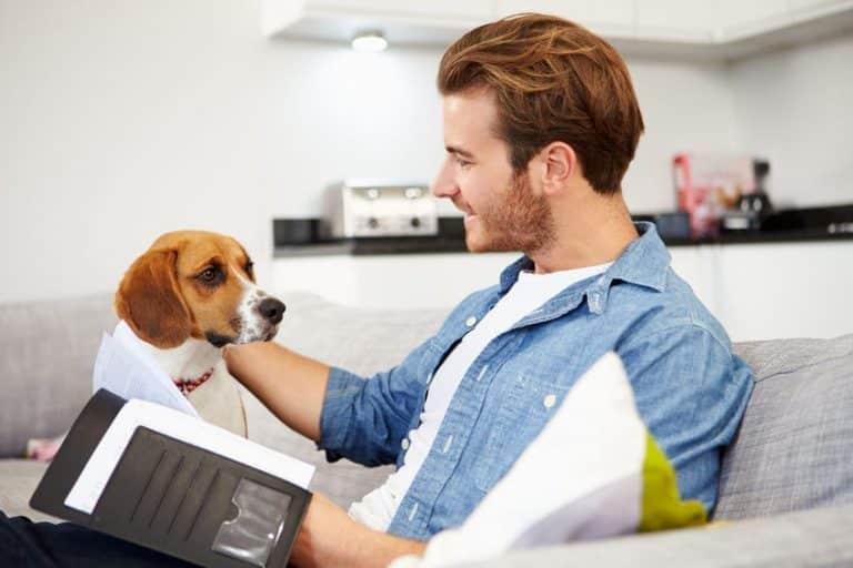 Comment choisir le BON chien ? Celui fait pour moi et mon style / lieu de vie ?