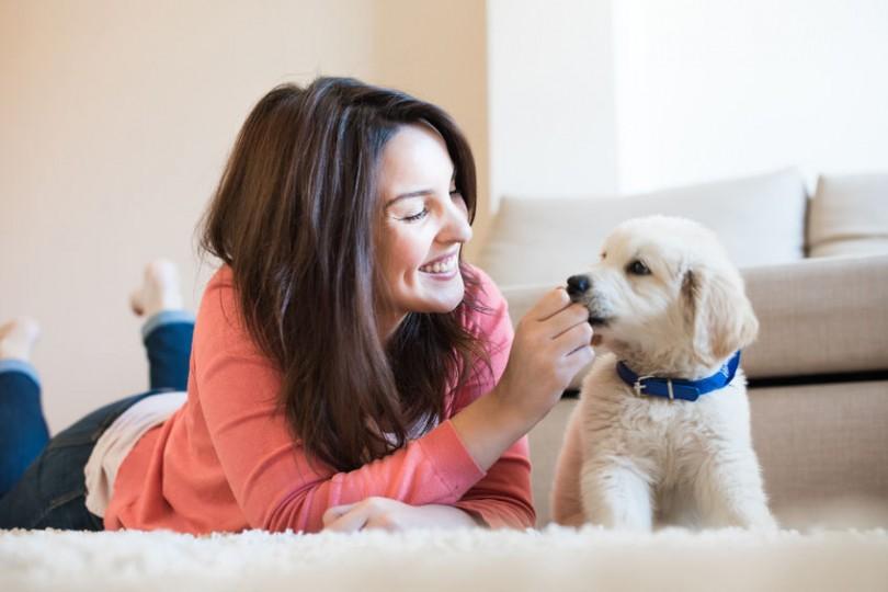 apprendre prenom chien