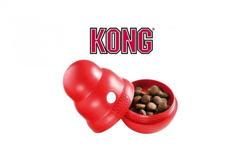 Jouet Kong pour chien : prix, test, avis et comparatif des