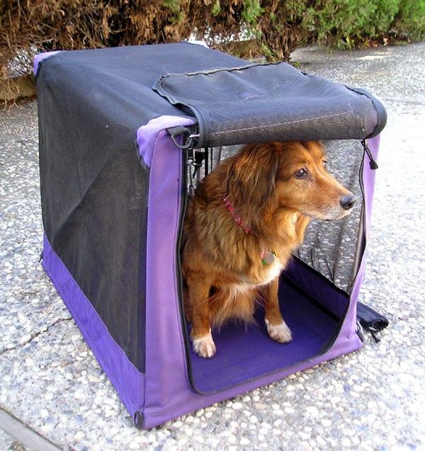 cage transport tissu