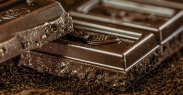 chien mange chocolat