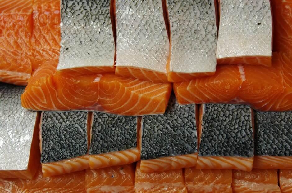 chien mange saumon