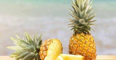 chien manger ananas
