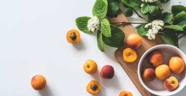 chien-mange-abricot