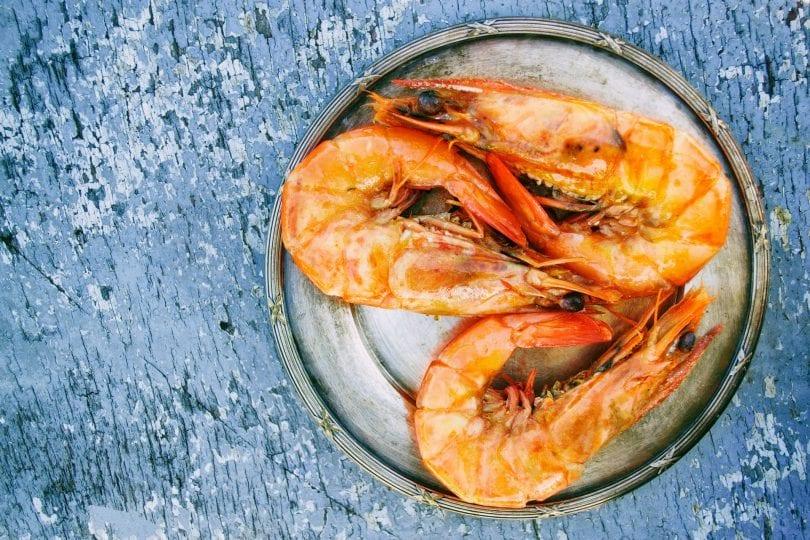 chien-mange-crevettes