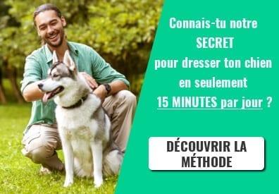 banniere-15 MIN PAR JOUR-reduite