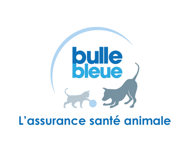 logo_bulle_bleue
